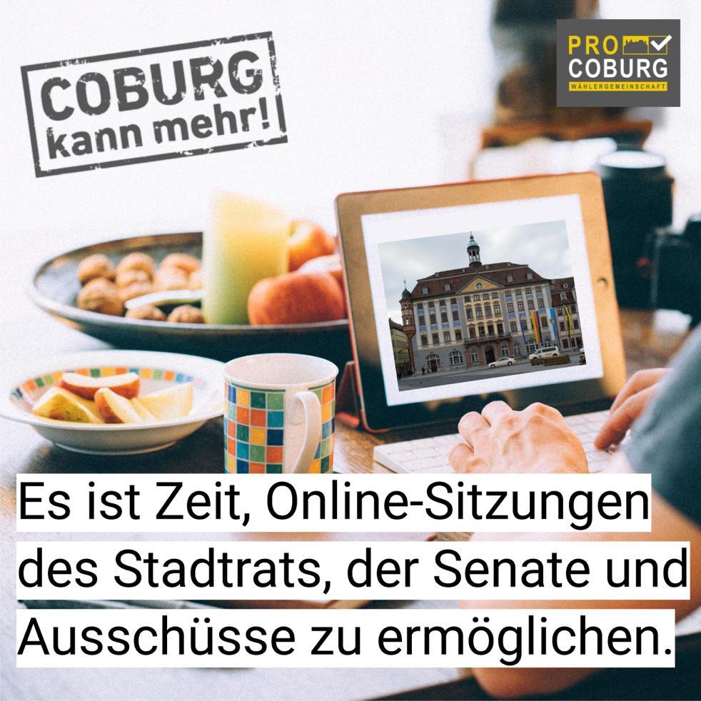 Online-Meetings des Stadtrats, der Senate und Ausschüsse